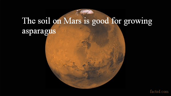 Mars Facts: Interesting Facts About Mars, the Red Planet ...