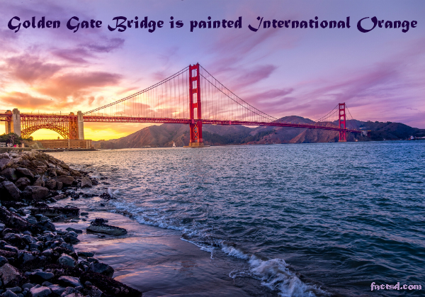 golden gate bridge facts