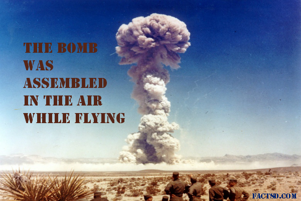 an introduction of the history of the american atomic bomb dropped on the japanese city of hiroshima Atomic bomb: introduction of nuclear weapon  bomb in history was dropped on the japanese city of  had dropped an atomic bomb on the city of hiroshima.