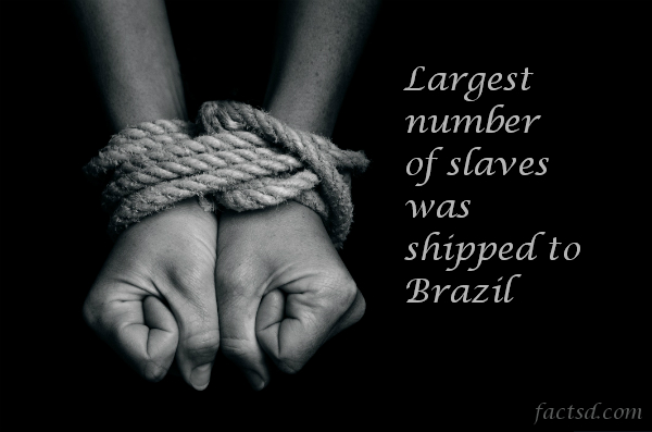 slavery facts