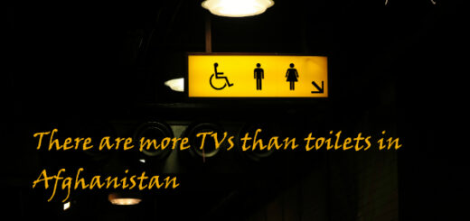 toilet facts