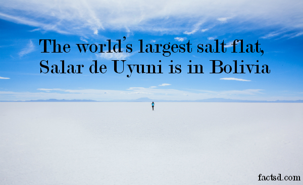 bolivia facts