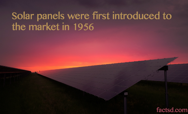 Solar Energy Facts 50 Interesting Facts About Solar