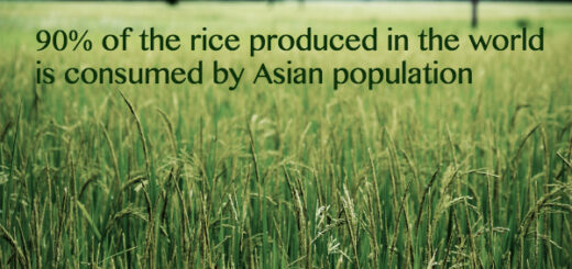 asia facts