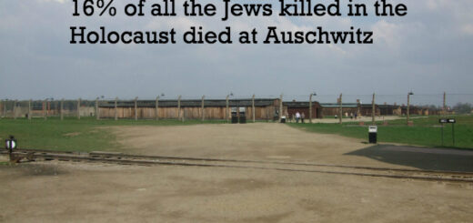 auschwitz facts