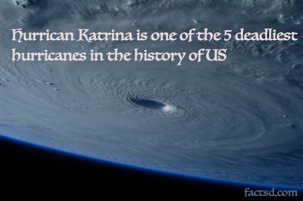 hurricane katrina facts