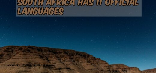 south africa facts