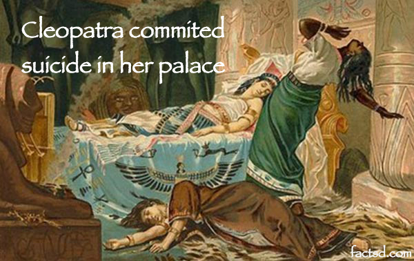 cleopatra facts