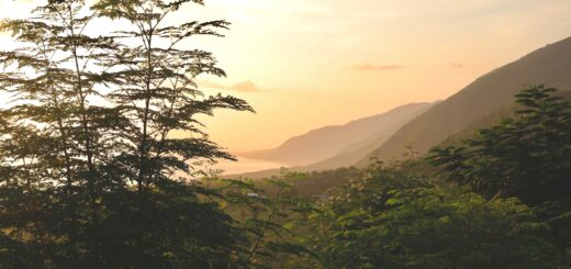 Mountain Landscape on Haiti